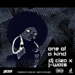 DOWNLOAD: One Of A Kind – DJ Ciza x J-Wats