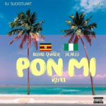 VIDEO: Pon Mi (remix) – DJ Slickstuart & DJ Roja ft. Beenie Gunter & Skales