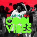 DOWNLOAD : Brian Nadra – Cool Vibes