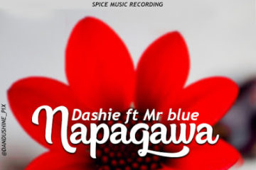 Download: Dashie Ft. Mr. Blue - Napagawa