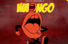 Download: Dulla Makabila - Waongo