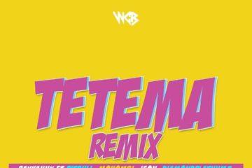 Rayvanny Ft. Diamond Platnumz, Mohombi, Jeon & Pitbull - Tetema Remix