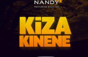 Nandy Ft. Sauti Sol - Kiza Kinene | Stream Video & Download MP3