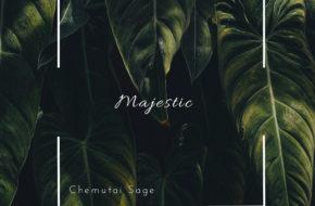 Chemutai Sage- Majestic | Stream Video & Download MP3