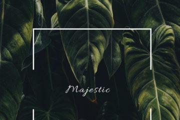 Chemutai Sage- Majestic | Stream Video & Download MP3