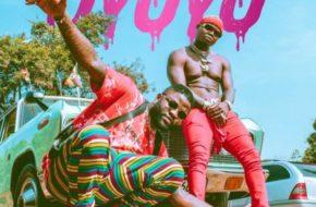 Skales Ft. Harmonize - Oyoyo| Stream Video & Download MP3