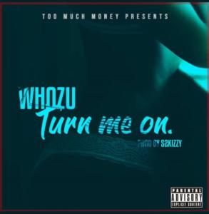 Whozu ft. S2kizzy - Turn Me On