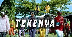 Lava Lava ft. Rayvanny - Tekenya remix