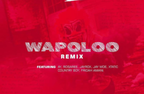 Weusi ft. AY, Rosaree, Jayrox, Jay moe, Country boy, Xtatic, Fridah Amani – Wapoloo Remix