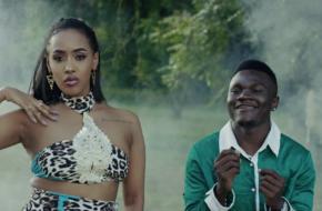 Tanasha Donna ft. Mbosso - La Vie