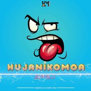 Harmonize-Hujanikomoa