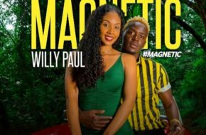 Willy Paul - Magnetic