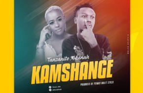 Tanzanite ft. Linah - Kamshange