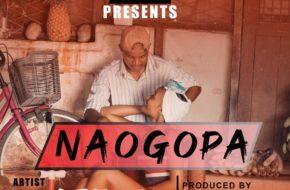 Platform - Naogopa