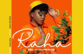 Zee ft. Mr Blue - Raha