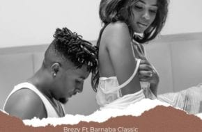 Brezy Ft. Barnaba - Wife