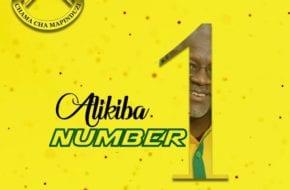 Ali Kiba - Number 1