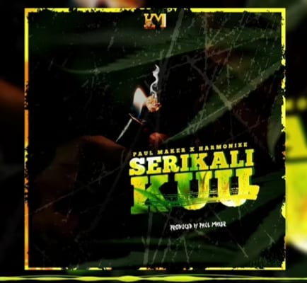 Harmonize ft. Paul Maker - Serikali Kuu