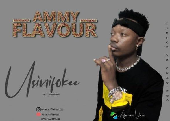 Ammy Flavour - Usinifokee