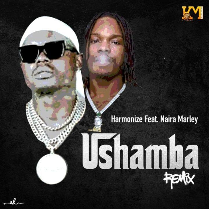 Harmonize ft. Naira Marley - Ushamba Remix