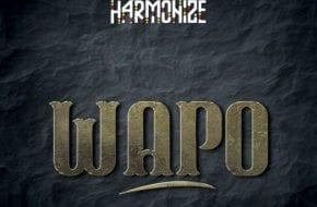 Harmonize - Wapo