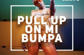 Cindy Sanyu - Pull Up On Mi Bumpa