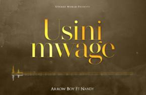 Arrow Bwoy ft. Nandy - Usinimwage