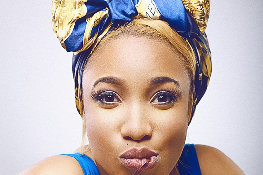 Image result for tonto dike