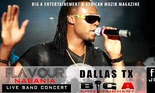 Flavour Dallas Ada Ada Performance