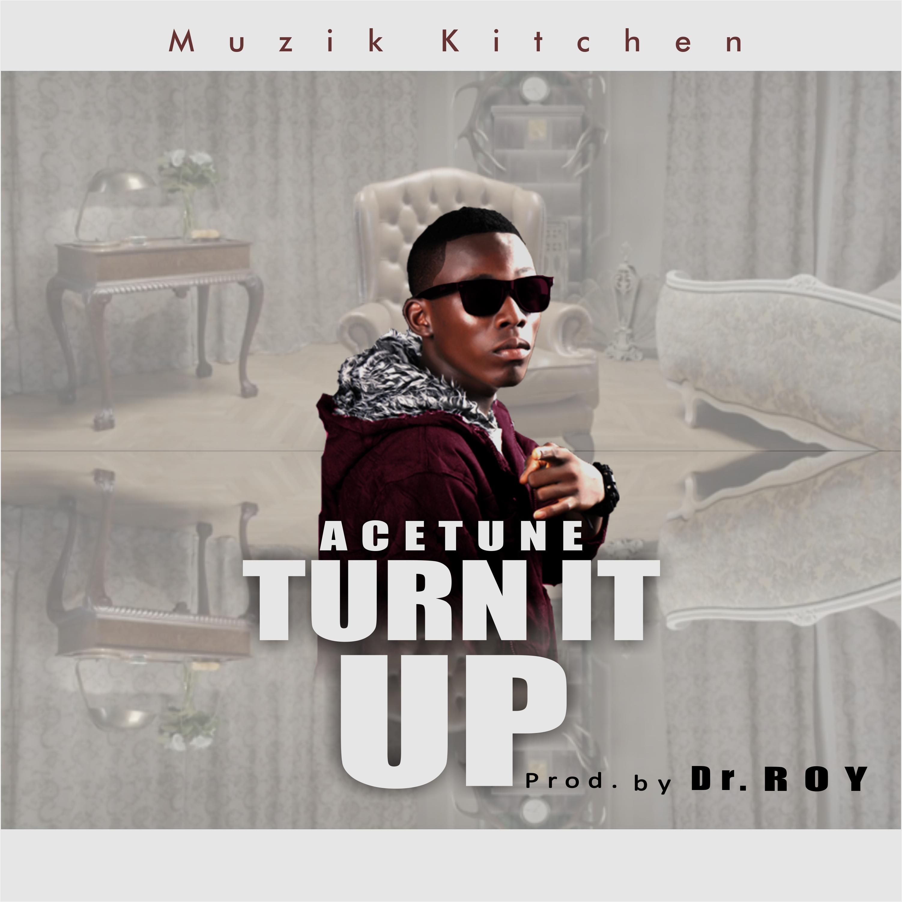 Turn It Up - Art New