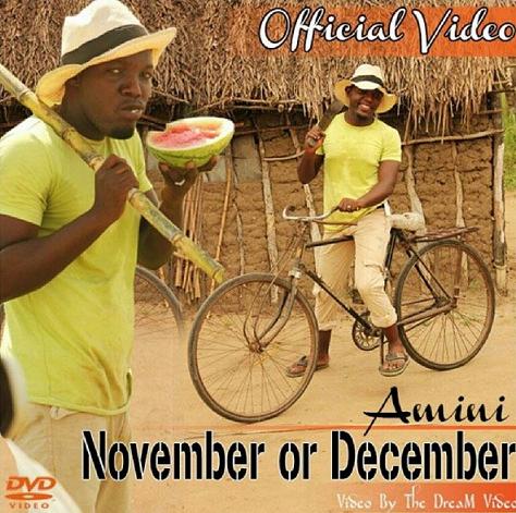 Amini November or December Video Art