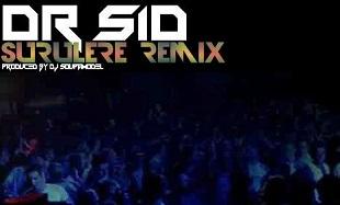 Dr SID Surulere Remix Art feat