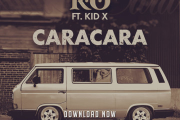 K.O Kid X Caracara Art