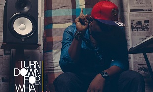 Masterkraft Turn Down For What Art