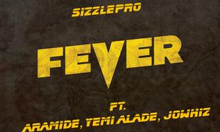 rsz_fever1b