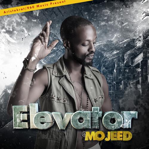 Mojeed Elevator Art