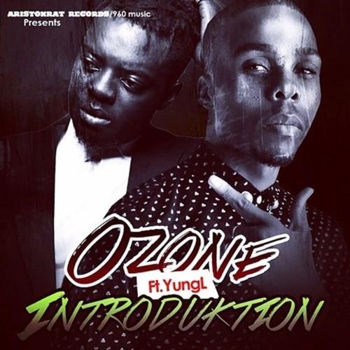 Ozone Introduktion Art