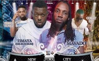 Africaribbean Concert 2014 Flyer feat