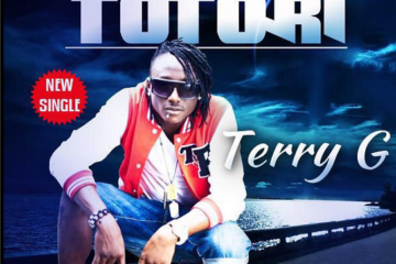 Terry G Totori Art