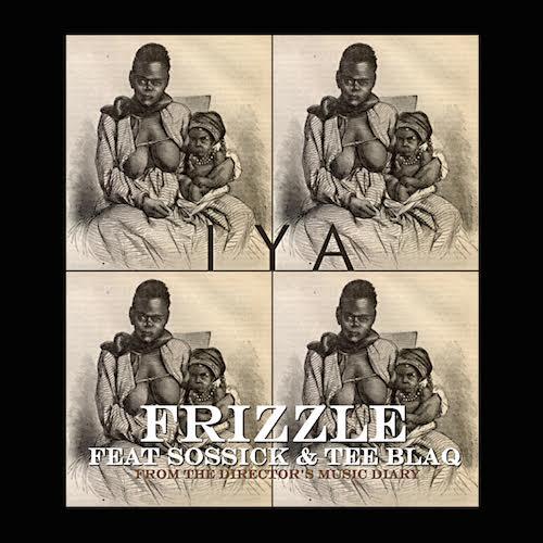 Frizzle IYA Art
