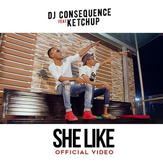 VIDEO: DJ Consequence ft. Ketchup - She Like
