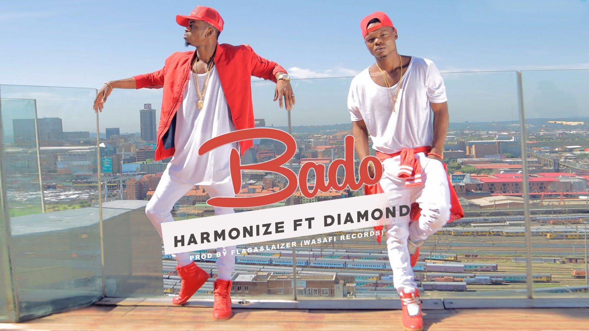 Harmonize Diamond Bado Art