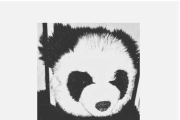 Ozone – Powder (Panda Refix)