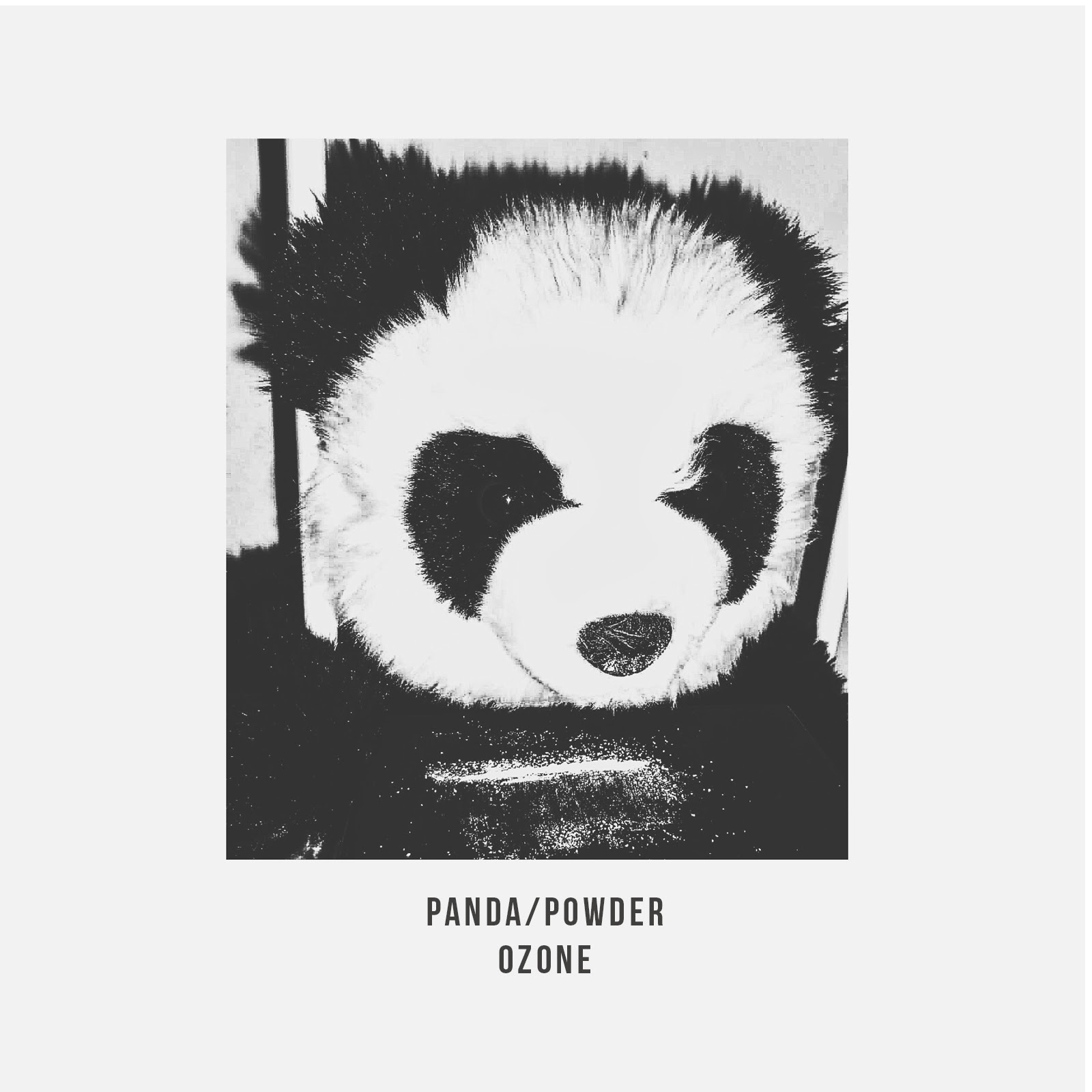 Ozone Panda Powder Art