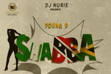 DJ Norie Presents: Young D – Shabba ft. Ayo Jay x Kerwin Dubois x Konshens x Timaya