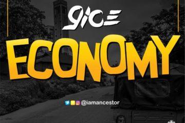 9ice Economy slider lead