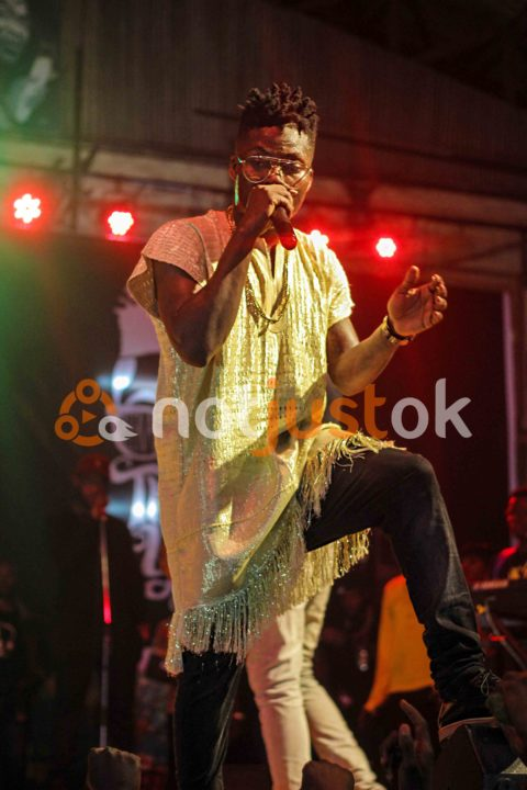 """Reekado Banks, Don Jazzy, The MAVIN Crew, Ycee, Kiss Daniel, Small Doctor & More Turn Up for Reeky's """"Thank You"""" Concert"""