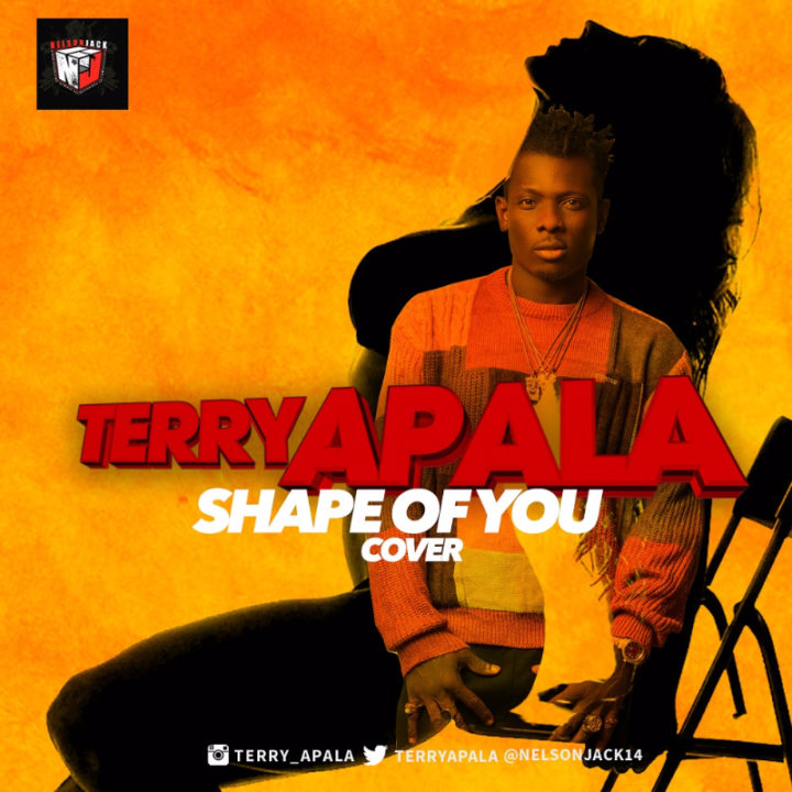 Terry Apala - Shape of You (Ed Sheeran Cover)