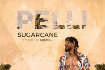 Pelli – Sugarcane (prod. LuisAMG) | Dance Video