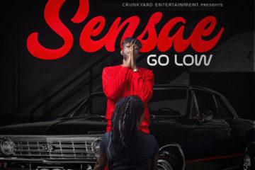 VIDEO: Sensae – Go Low
